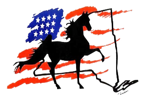 A picture of black horse in front of a Unites States flag